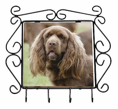 Sussex Spaniel Dog Wrought Iron Key Holder Hooks Christmas Gift, AD-SUS1KH