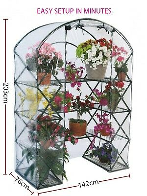 X-UP 4 Tier Greenhouse Garden Plant Tall Apex Green Hot House with PVC Cover