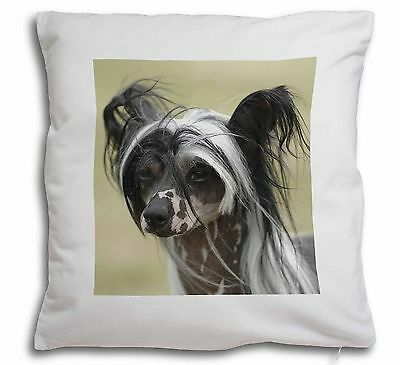 Chinese Crested Dog Soft Velvet Feel Scatter Cushion Christmas Gift, AD-CHC2-CPW