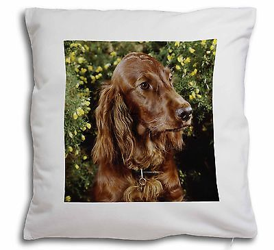 Irish Red Setter Dog Soft Velvet Feel Scatter Cushion Christmas Gift, AD-RS1-CPW
