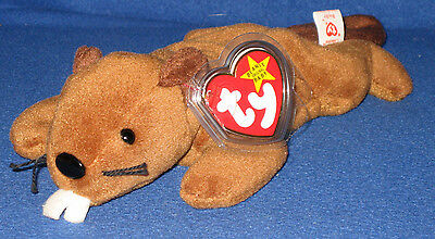 TY BUCKY the BEAVER BEANIE BABY - MINT with MINT TAG