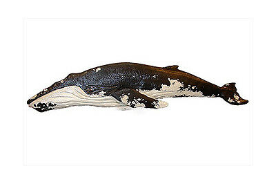 Chainsaw Carving Humpback Whale Carved Right Baleen Scrimshaw Wall Art 161