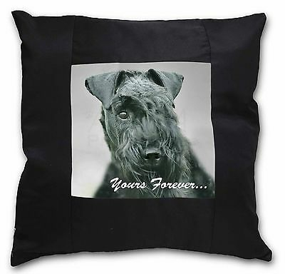 Kerry Blue Terrier 'Yours Forever' Black Border Satin Scatter Cushi, AD-KB1y-CSB