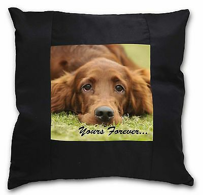 Red Setter Dog 'Yours Forever' Black Border Satin Scatter Cushion C, AD-RS2y-CSB