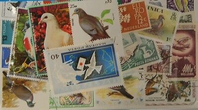 25 Pigeons (M28) Stamps