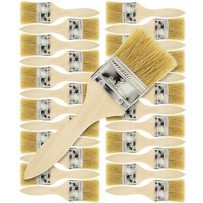 """US Art Supply 2"""" Chip Brushes Paint Glue Adhesives Touchups 2 Inch Lot of 24"""