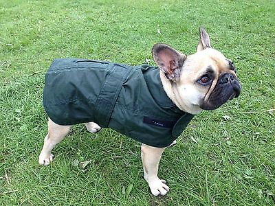 "Dog Coat Waxed Cotton Jacket Waterproof Wax  16""  french bull dog boston border"