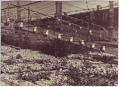 Wwii Press Photo: View Of Auschwitz Concentration Camp, Poland February 1945 *