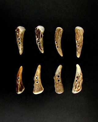 """Premium Antler Buttons,2"""" Toggles,tines,crafts,8 Bumpy Brown Pieces,200-27"""