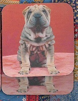 SHAR PEI FAWN Rubber Backed Coasters #0904
