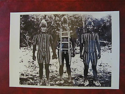 Chile - New Postcard - Man's Selknam Initiation Ceremony