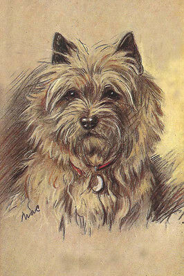 Cairn Terrier Dog DARK COATED by Lucy Dawson 1930s ~ LARGE New Blank Note Cards