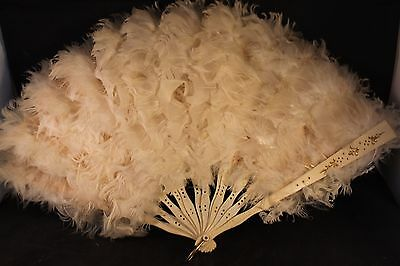 Fluffy antique French white feather fan. Burlesque, coquette. c1930