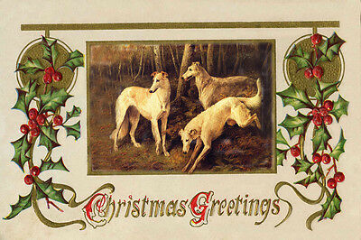 Borzoi Dogs 1896 Drawing by John Emms - LARGE New Blank Christmas Note Cards