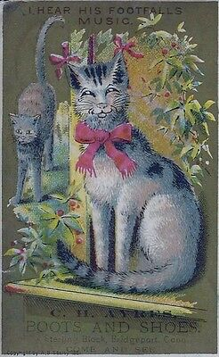 Cat Victorian Trade Card AB Seeley 1881 C.H. Ayres Boots and Shoes Bridgeport CT