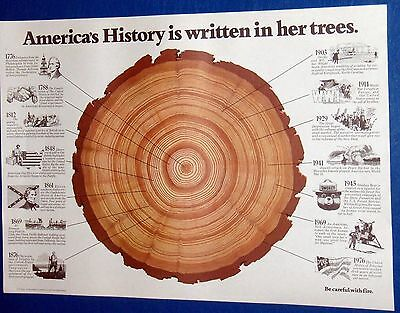 """Vintage Print """"America's History is Written In Her Trees: US Forest Service"""
