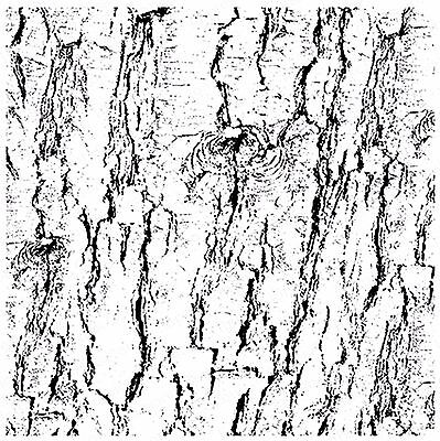 Crackle Background Cover-a-Card Unmounted Cling Rubber Stamp CC048