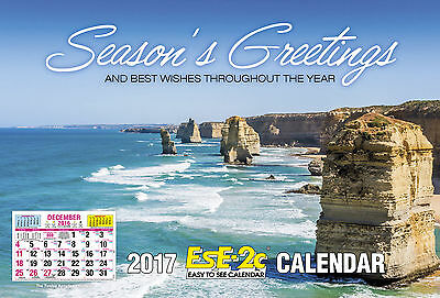 EsE-2C (Easy to See)  2017 Calendar NEW