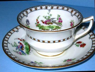 Aynsley c.1891 Cup and Saucer Chelsea Exotic Bird Floral Rose Spray HPT Teacup