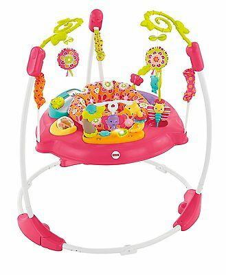 Fisher Price Pink Petals Rainforest Jumper Jumperoo Exercise Baby Gym NEW NIB