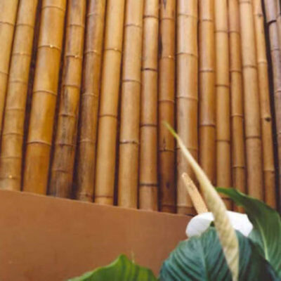 Bamboo Poles-assorted sizes