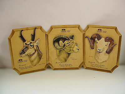 Vintage Pioneer Chainsaw Advertising Calander Topper Set Of Three