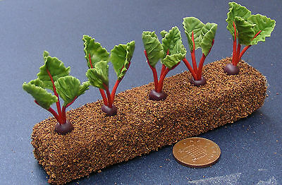 1;12 Scale Strip Of Five Beetroot Dolls House Miniature Vegetable Accessory