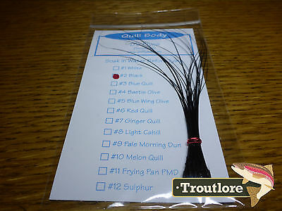 Quill Body Pack Black Qb2 Stripped Quills - New Fly Tying Material