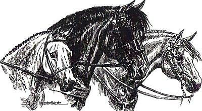 WELSH PONIES horses NOTE CARDS signed by artist ... may be framed