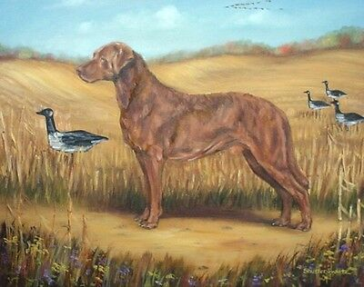 CHESAPEAKE BAY RETREIVER DOG blank NOTE CARDS signed by artist ... may be framed