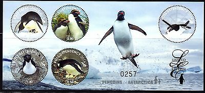 Ross Dependency 2014 Penguins Antarctic Limited DeLuxe Sheet of 5 - Scarce