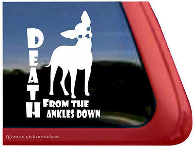 DEATH FROM THE ANKLES DOWN | Smooth Chihuahua Dog Window Vinyl Decal Sticker