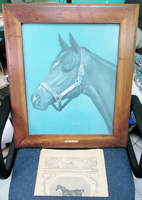 1975 American Champion Honest Pleasure By Jerry Puleo Signed & 1946 Chronicle