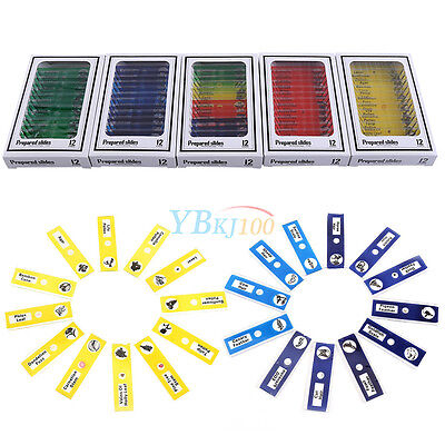 12pcs Various Animals Insects Plants Flowers Prepared Microscope Slides for Kid