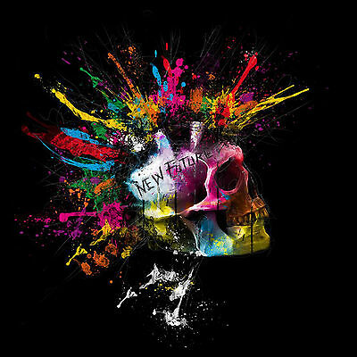 Skull Punk Rock Hair Abstract Style WALL ART CANVAS FRAMED OR POSTER PRINT