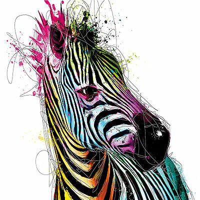 Zebra In Stripes Colours Abstract WALL ART CANVAS FRAMED OR POSTER PRINT