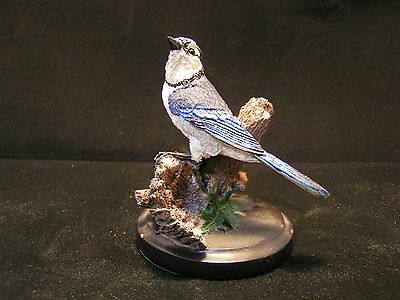 The Country Bird Collection Blue Jay