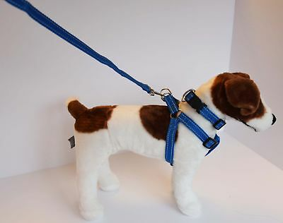 Reflective Dog Harness, Collar and Lead Black, Blue & Red