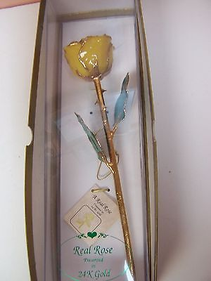 """Real Rose Preserved In 24 K Gold *new* In Gift Box 10 1/4"""" Long Yellow Rose"""