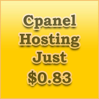 Website Hosting For 1 Year Cpanel Free WebSite Install or Transfer