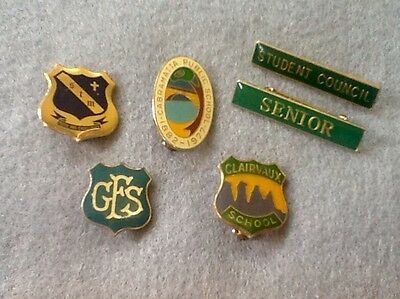 Bargain SCHOOLS Mix (6) BADGES & Pins  .. FREE POST