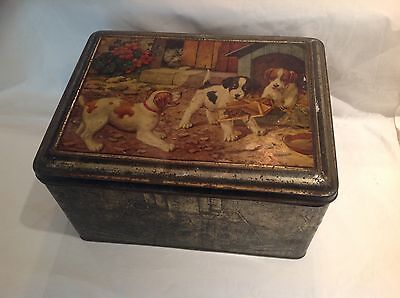 Antique Circa 1900 Large Collectable Litho Tin Box with 3 Puppies playing