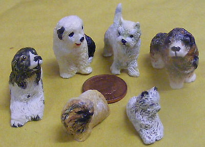 1:12 Scale Resin Set Of Six Dogs Dolls House Miniature Pet Garden Accessory