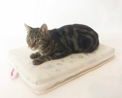 Orthopedic Medical Veterinary Memory Foam & Wool Cats Beds - Small to X-Large