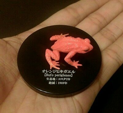 Takara (Not Kaiyodo) Extinct Golden Orange Toad Frog Figure