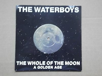 """The Waterboys 7"""" vinyl - The whole of the moon."""
