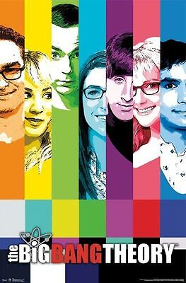 "The Big Bang Theory Signals Poster ""licensed"" Brand New ""rainbow Cast """