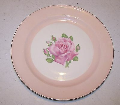 Edwin Knowles Dinner Plate - Pink Band, Pink Rose