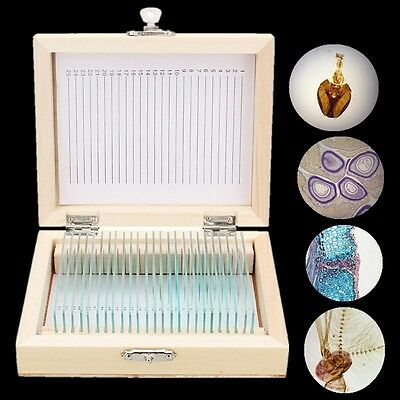 25pcs Glass Prepared Microscope Slides Lab Specimens for Biology Wooden Box