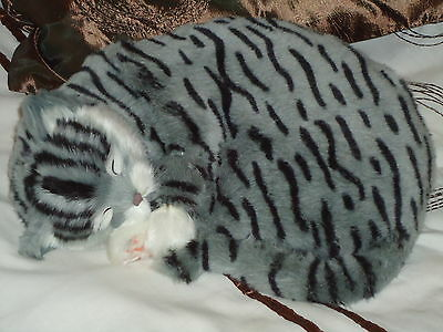 Realistic Life-Like Grey Sleeping Cat Fooled Many People- House Trained -White